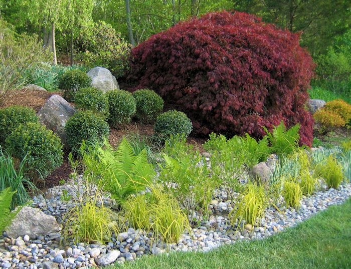 Garden Mulch Ideas garden home landscaping ideas with mulch and outdoor rock mulches gravel grasses A Mix Of Shrubs Ferns And Perennials With River Rock In Lieu Of Mulch And