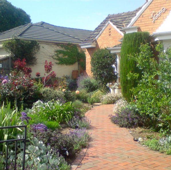 Perennial borders at their best #garden#melbourne #gardendesign #gardenmaintenance #perrenials #hedge #flowers