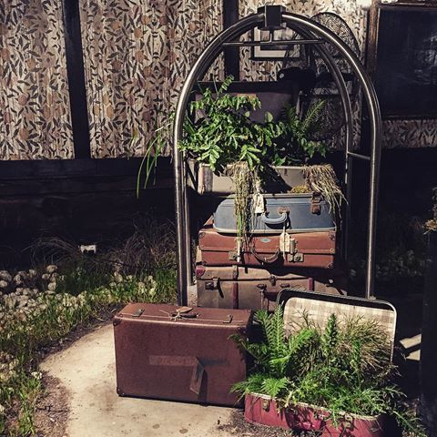 Image result for stoneleigh pop-up chippendale