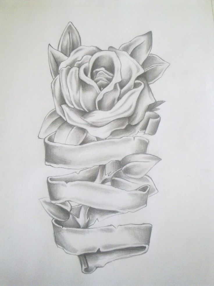 Rose Tattoo Drawing by =Anako-Kitsune on deviantART.. this would be cute if it was wrapped around a leg or arm or something.....mmmhhh
