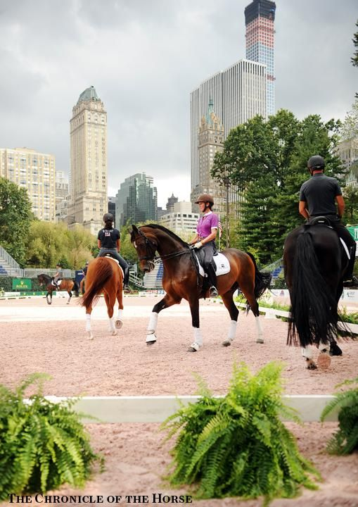 The Central Park Horse Show, presented by Rolex   The Chronicle of the Horse