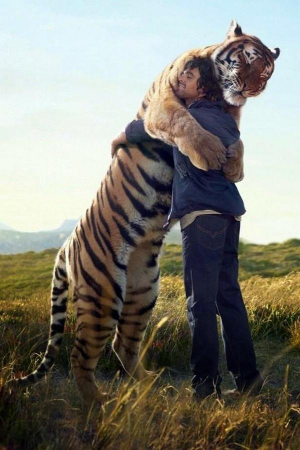 Every now and again everyone needs a big hug.