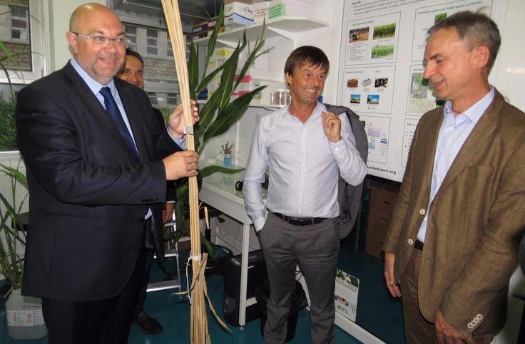 Le ministre de la Transition énergétique, et son homologue de l'Agriculture, Stéphane Travers, ont visité des unités de pointe sur le monde végétal.