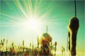 sunglitters