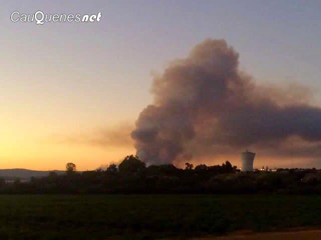 Cauquenesnet / Noticias de Cauquenes: Incendio Forestal de Tabolguen se mantiene activo ...