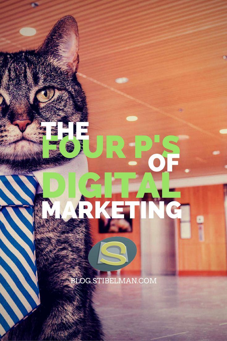 The Four P's of Marketing are no secret. Every good marketer knows that they are important for a successful marketing strategy. So since we're here, what are The Four P's of Digital Marketing?
