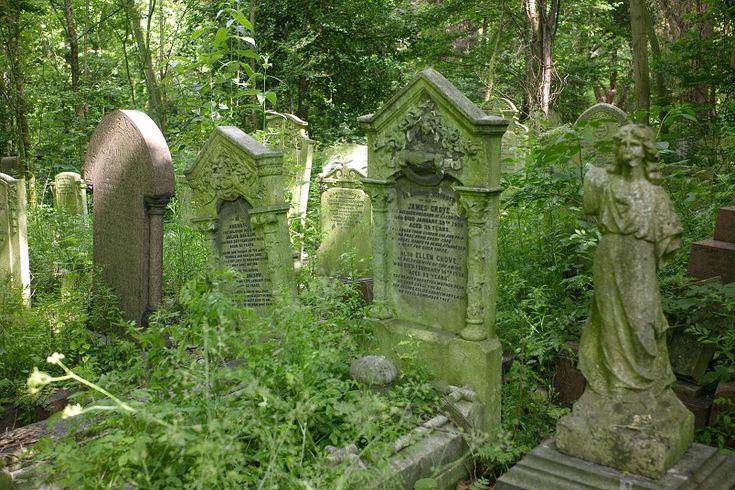 Tower Hamlets Cemetery Park, London - this magnificent Victorian cemetery, which closed for burials in 1966, is now a nature reserve. It offers 33 acres of woodland and wildflower meadows to wander in.