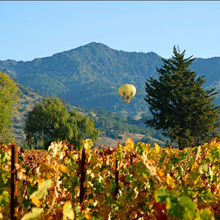 1801 First Luxury Inn—Napa, California. #Jetsetter Hot air ballooning with friends was amazing!
