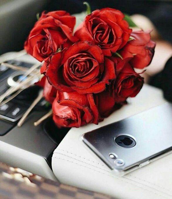 لبـيـھ ي معنى غرآمي والأشواق يآللي غـرامگ بين نـبـضي وبيني إي والله اني لگ من القلب مشتآق Beautiful Roses Love Flowers Lovely Eyes