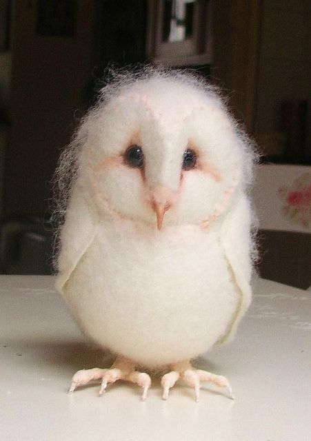 baby barn owl - too cute!!! This woman has a lot of cute photos of her creations felted almost looks real This photo belongs to helenpriem's photostream