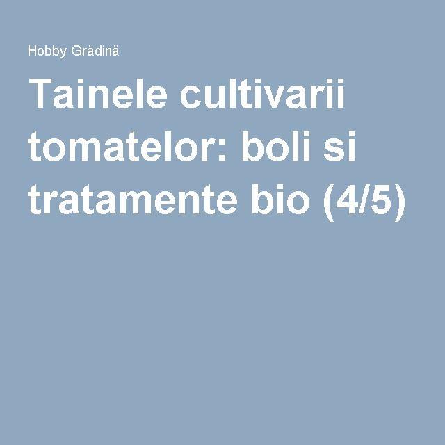 Tainele cultivarii tomatelor: boli si tratamente bio (4/5)