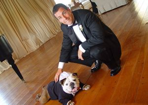 Adam Sandler's BulldogFamous Bulldogs, Brides Grooms, Adam Sandler, English Bulldogs, Pets, Celebrities Wedding, Wedding Dogs, Beach Wedding, Bull Dogs