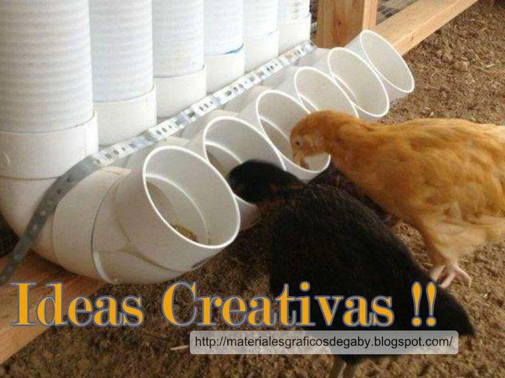 Materiales gráficos Gaby: Alimentador automático para aves en caños de pvc