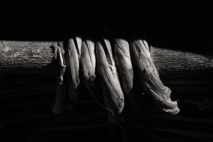 redzenradish-photography:  Basket Edge