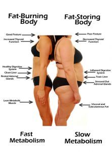 5 Tiny Tweaks That Will Shift Your Body From 'Fat-Storing' to 'Fat-Burning' Mode !!!