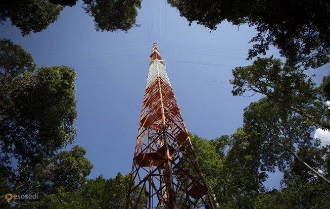 Вышка ATTO – #Бразилия #Амазонас (#BR_AM) Обычно, если строишь что-то самое большое или самое высокое, стараешься выставить это на обозрение как можно большего количества людей. Но с Amazonian Tall Tower Observatory, ставшей самой высокой башней Южной Америки, другая история. До неё так просто не доберёшься и экскурсии здесь вам вряд ли кто-то будет устраивать.  ↳ http://ru.esosedi.org/BR/AM/1000254439/vyishka_atto/