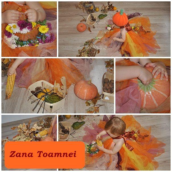 Zana Toamnei