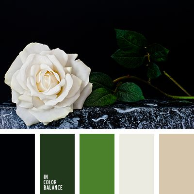 Superb mild color composition. Green shades beneficial effects on mood, increase vitality, generally pleasing to the eye. Milk, white and black - they are the perfect companion. Very refreshing and create a single harmonious combination. This palette can find a well-deserved application in the design of color space your office, living room, hallway.