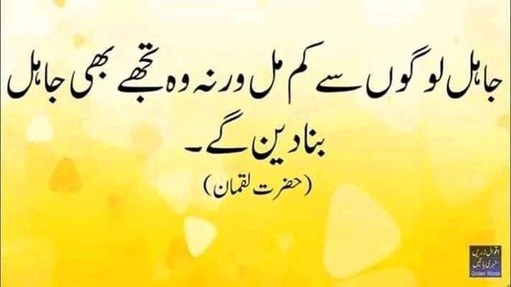 Pin By Salim Khan On Jokes Husband Wife: Pin By Salim Khan On Aqwal E Zareen