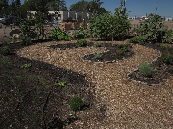 39 best School Garden Design IDEAS images on Pinterest | Vegetable ...