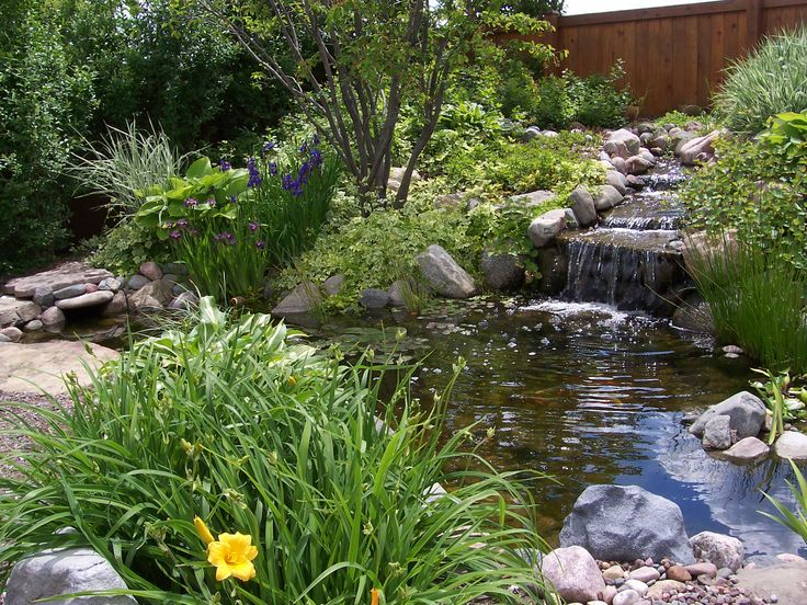 Babbling backyard pond ponds backyard container water