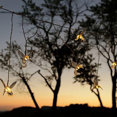 Colibri Guirlande électrique d'extérieur à 8 lampes forme colibris L3m