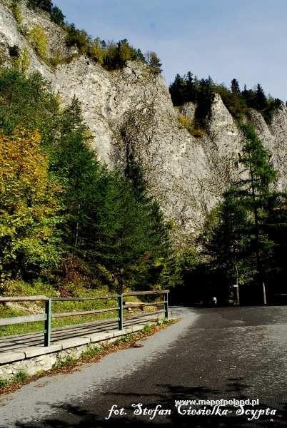 Droga do Lesnicy - Szczawnica