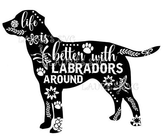 Pin By Shichihara Yu On Tmz In 2020 Labrador Life Svg