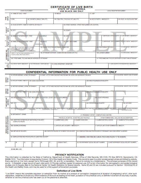 Sample Birth Certificate Template 12