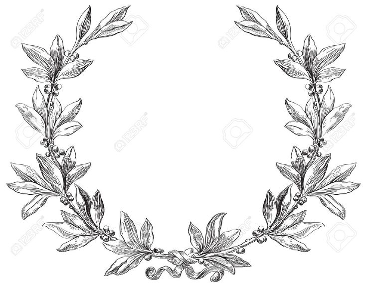 17265953-Laurel-wreath-Decorative-element-at-engraving
