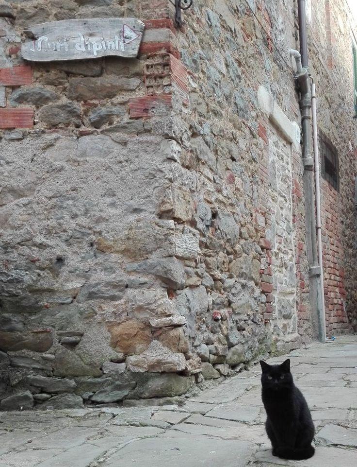 Muri-dipinti-gatto-Mugnano-black-cat
