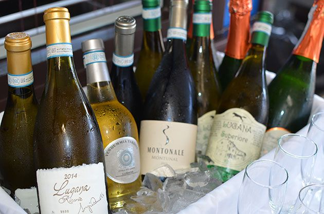 Lugana: Discover Italy's Hidden White Wine Gem