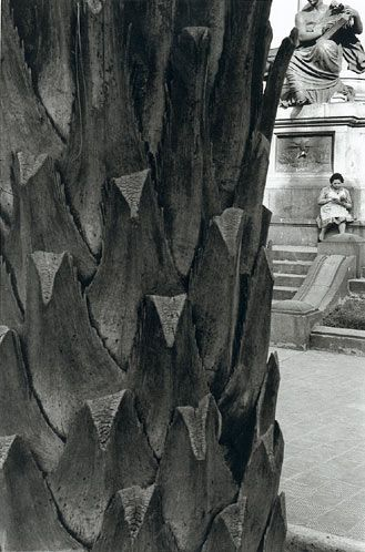 fotos maravillosas. Sergio Larraín, fotógrafo chileno