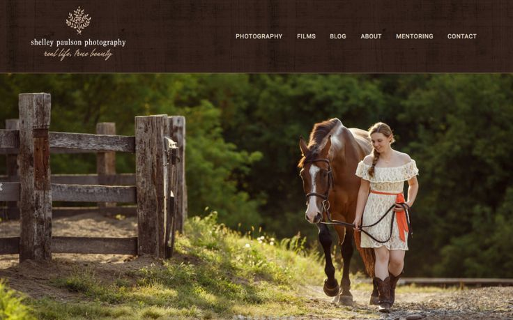 4 : Shelley Paulson - Focusing on equine portraits - Podcast