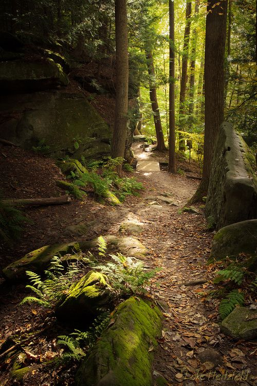 21 best images about cuyahoga valley national park on pinterest hiking trails park in and parks for Chen s garden cuyahoga falls oh