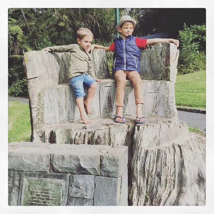 #BlockHouseBay #Auckland the boys on a tree-stump planted around 1886(ish).