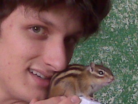 My son loves pets of a different variety. Our home houses exotic pets off all different types big and small. The most challenging pet was not a giant lizard or a saucy cockatoo, but instead a tiny rodent. Flower is a captive bred Siberian chipmunk. These chipmunks are not the type you find in North America, but are another species widely sold as pets such as in the UK. As wonderful as this trusting bond seems, Flower, along with many other captive chipmunks didn't turn into the best of pets…