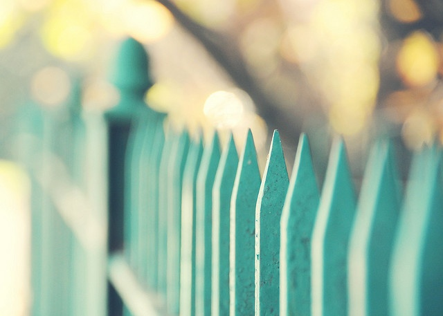 oh my goodness. how MAGICAL would it be to have a fence painted this color?