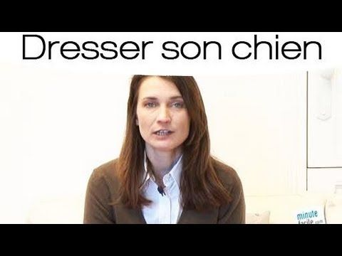 ▶ Dresser son chien : Education canine positive - YouTube