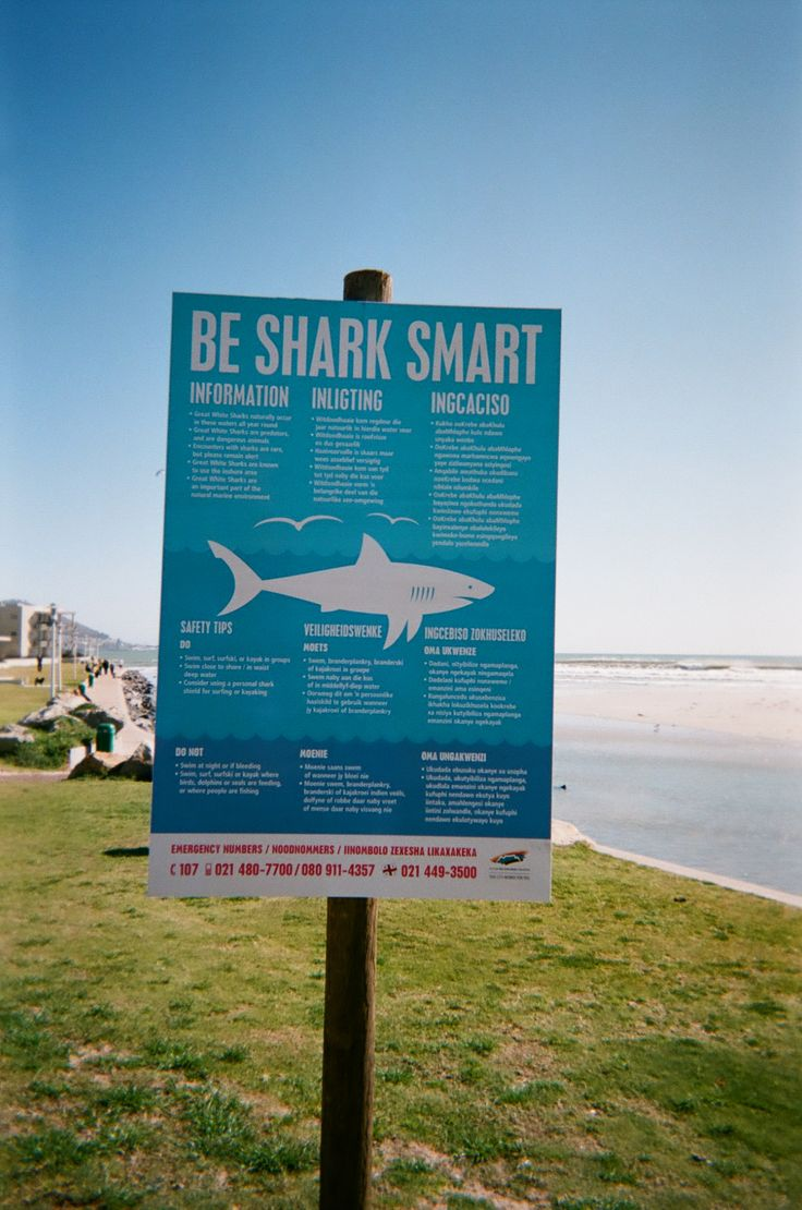 Shark sign posted on our beach in Cape Town