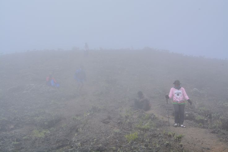 A happiness in the mist on Tambora mt. #Sumbawa #Indonesia