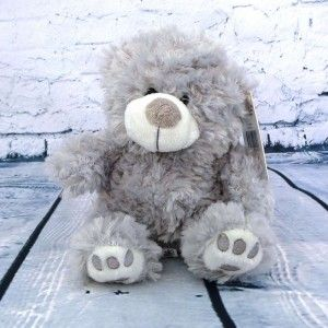 This pressie includes a gorgeous fluffy teddy bear, guaranteed to brighten up anyone's day.   http://littlepressie.com.au/store/fluffy-grey-teddy/