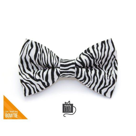 Safari Cat Collar Cat Collar Zebra Animal Print Cat Collar