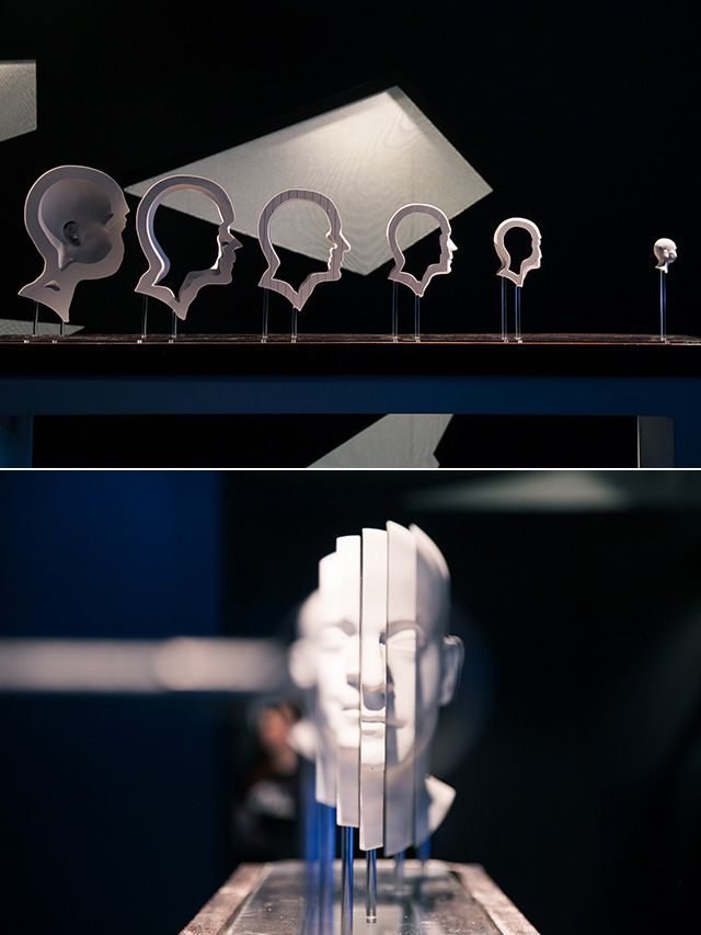 Nothing is as it Seems: The Art of Illusion at Science Gallery.  zoetropes optical illusion kinetic sculpture exhibition