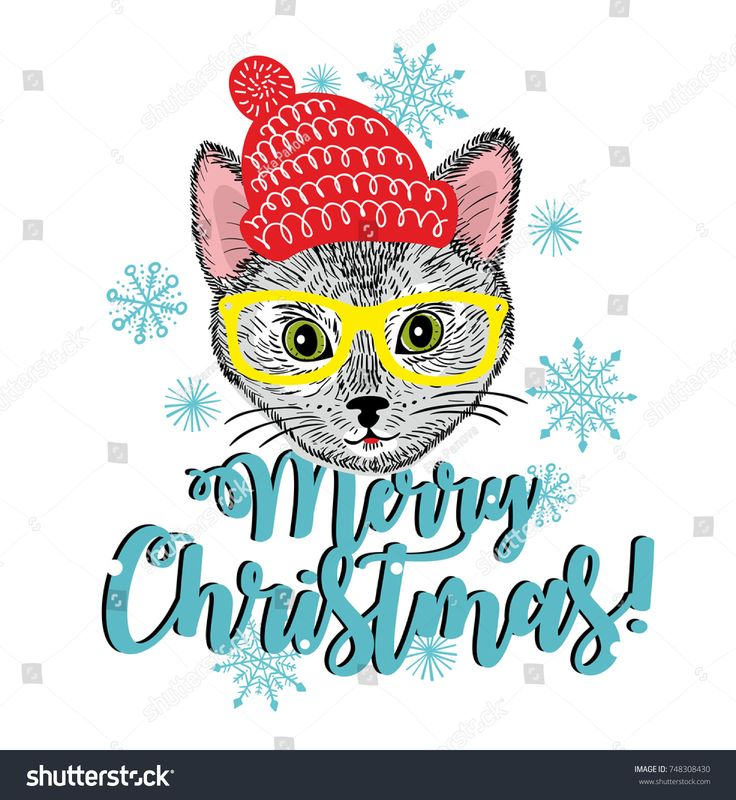 Merry Christmas card cover. Vector illustration of cat in hat in doodle stile.