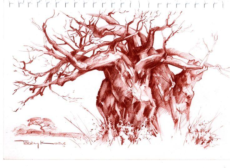 "Terry Kobus Drawings - ""Baobab Tree"" sepia pencil tree drawing on paper"