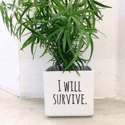 I will survive Blumentopf von Personello jetzt im design3000.de Shop kaufen! Grüner Daumen hin oder her – dieser Statement-Blumentopf macht...