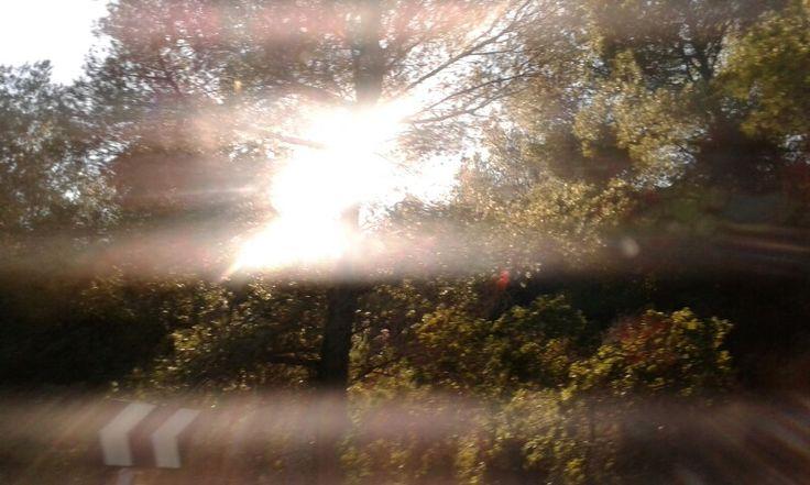 I saw a light