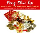 Feng Shui Tip!!!  How to Create a Beautiful Wealth Bowl  Create a wealth bowl and place it on your coffee table in the living room or family room.  Get a really beautiful bowl…you can use cloisonné, ceramic, crystal…anything that you love that is really gorgeous.  Now fill it with lots of goodies to represent wealth.  Fill it with fake gold ingots, diamonds, jewels and some coins and bills as well.  If you can turn it or spin it easily it's even better!  Special Wealth Ritual:  When friends…