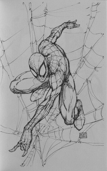Spider-Man by Michael Turner                                                                                                                                                                                 Plus
